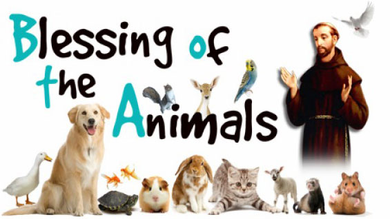 Blessing of the Animals and St. Francis Day Celebration