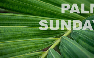 Sunday Morning – March 28
